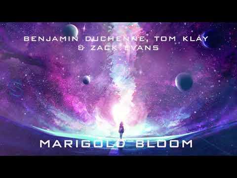 Benjamin Duchenne, Tom Klay & Zack Evans - Marigold Bloom tonos de llamada