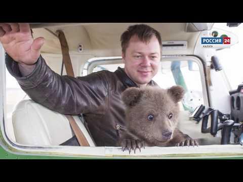 Вопрос: Есть ли медведи в Калужской области?