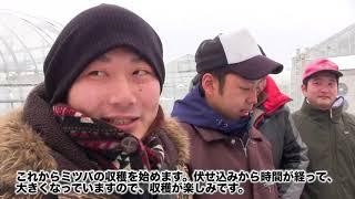 大地に生きる1月編