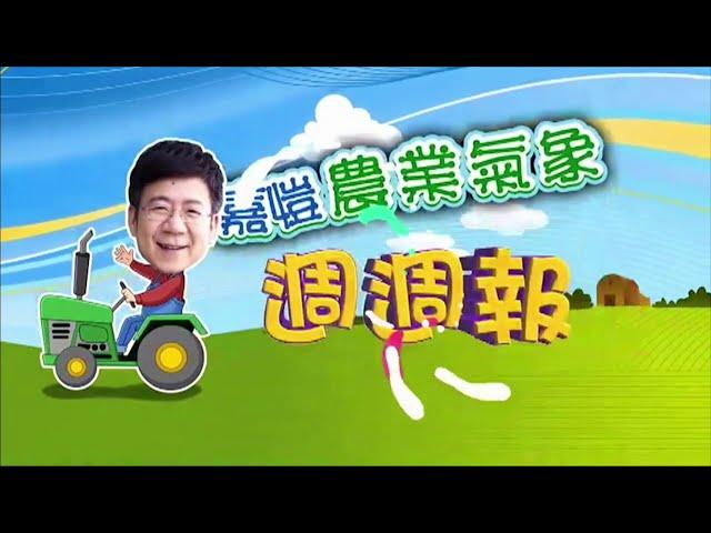 2020.11.30─嘉愷農業氣象週週報