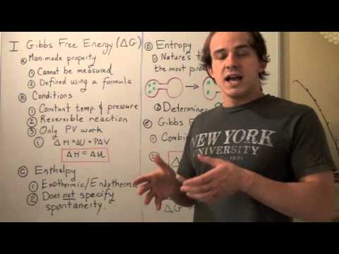 Introduction to Gibbs Free Energy
