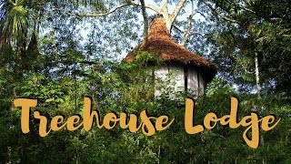 Amazon rainforest adventure travel in Peru at Jungle Treehouse Lodge