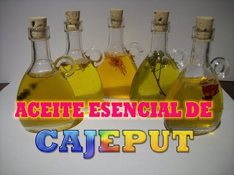 properties-and-uses-of-cajeput-essential-oil