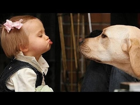 Ailamalia #Funny dogs and babies talking - Cute dog & baby compilation