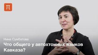 Кавказские языки — Нина Сумбатова