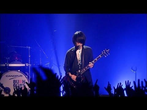 BURNOUT SYNDROMES 『FLY HIGH!!』ライブ映像(TVアニメ「ハイキュー!!セカンドシーズン」第2クールOPテーマ)