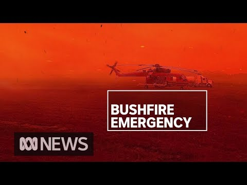 NSW Southern Highlands devastated by fires, while coastal town of Eden asked to evacuate | ABC News