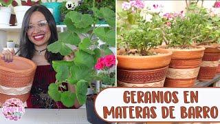 Plantando GERANIOS/NOVIOS en macetas de barro QUEDARON HERMOSOS │Candy Bu