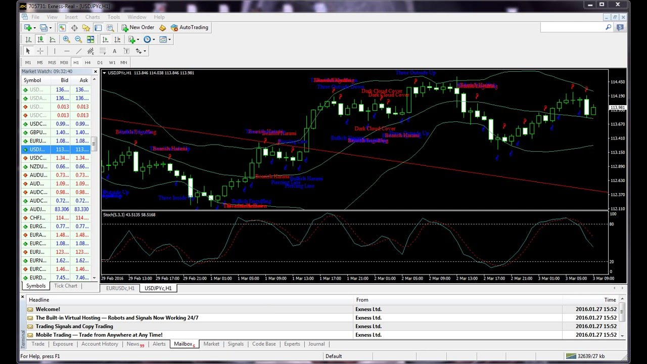 Forex forecast daily