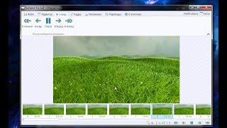 Захват видео в гиф анимацию ScreenToGif