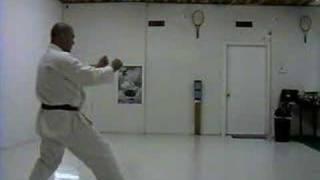 Jiin 2008 - Karate Shotokan - Martin Silva - Kata