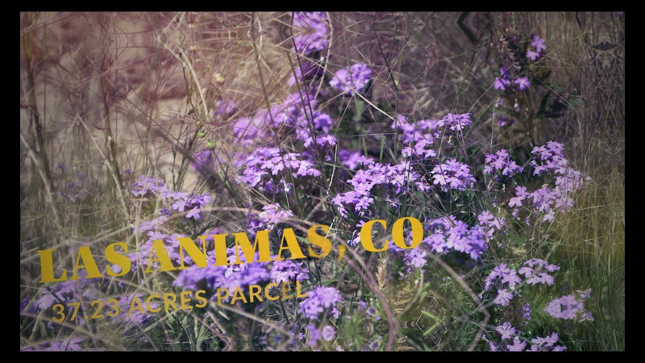 37.23 AC Unspoilt Las Animas, CO Country. Relax, Build, Hunt, or Camp, Road Frontage CO Rd 88. WOW!
