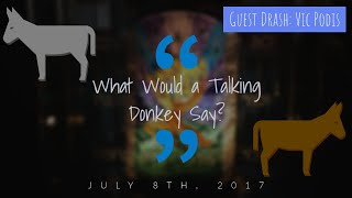 What Would a Talking Donkey Say? (Guest Message: Vic Podis) - Full Drash (7/8/2017)