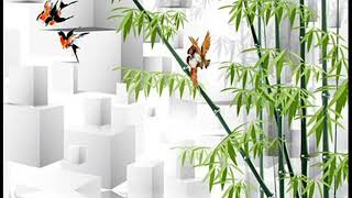 bamboo wallpaper - bamboo wallpaper home depot,bamboo wallpaper b&q,bamboo wallpaper border,