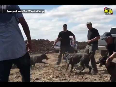 Violence Erupts at Standing Rock Reservation
