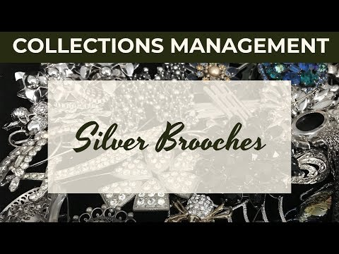 Silver Brooches - Collections Management