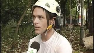 Tree Climbing Brasil-TV Claret, Rio Claro, SP