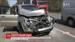 Боксер Узєлков збив лося на околиці Києва