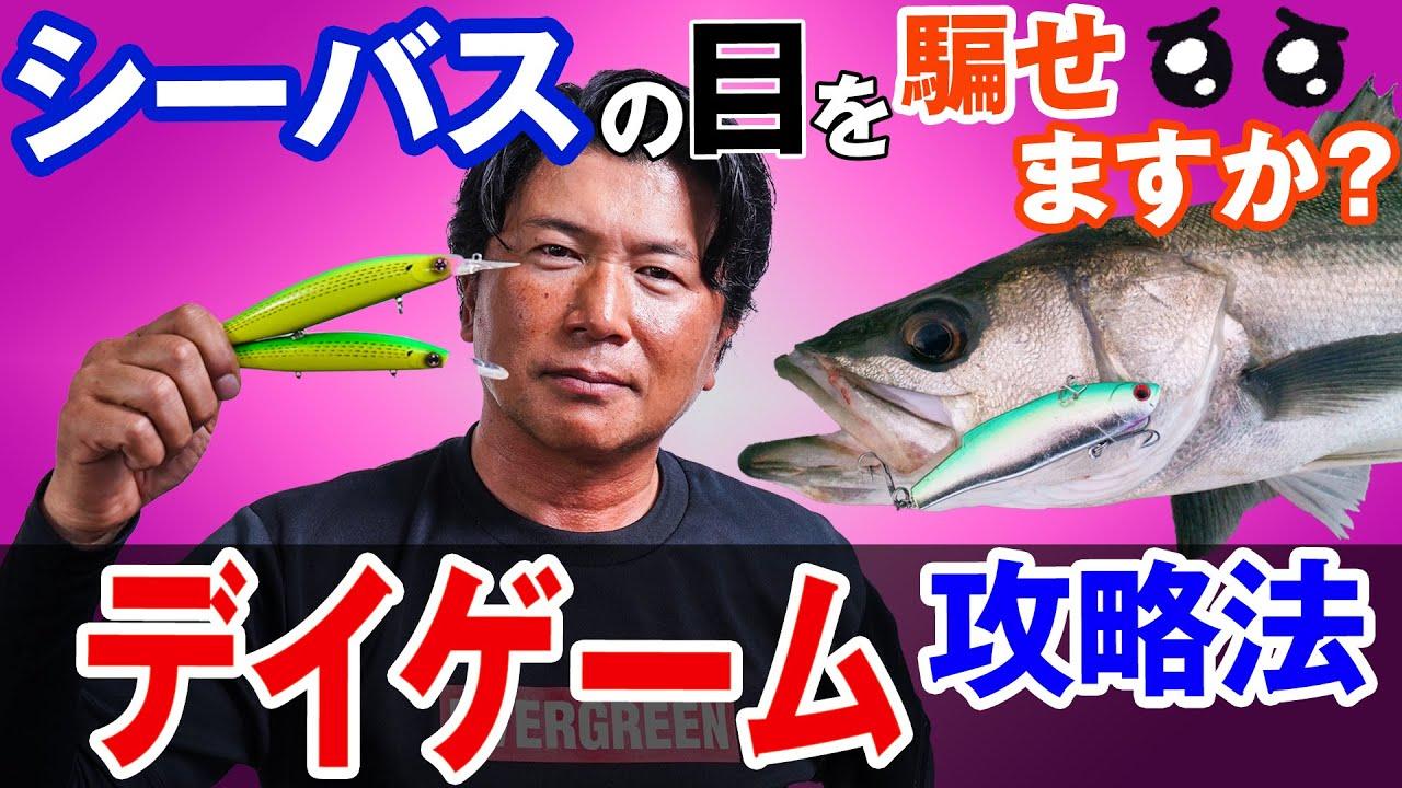 【デイゲーム攻略法】シーバスを日中に釣る方法教えます!オヌマンのシーバス塾
