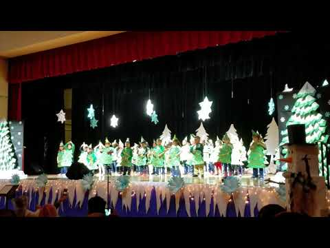 Durham Middle School Christmas Recital 2018
