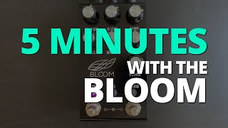 5 Minutes with the Jackson Audio Bloom - Pedal Demo