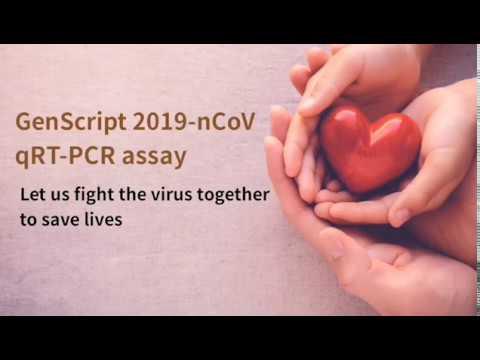 2019-nCoV qRT-PCR Detection Assay