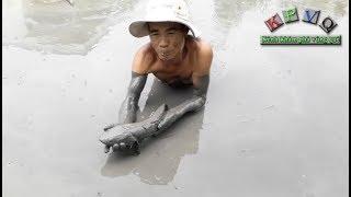 Điều bất ngờ dưới lớp bùn bên ao nhà - Khám phá vùng quê