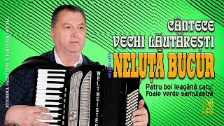 Descarca NELUTA BUCUR - Cantece vechi lautaresti 2