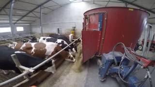 Budowa nowoczesnej obory - ruszty dla bydła, silosy na kiszonki Precon Polska