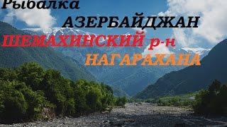 Рыбалка Азербайджан Шемаха