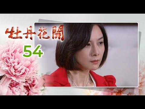 牡丹花開 第 054集