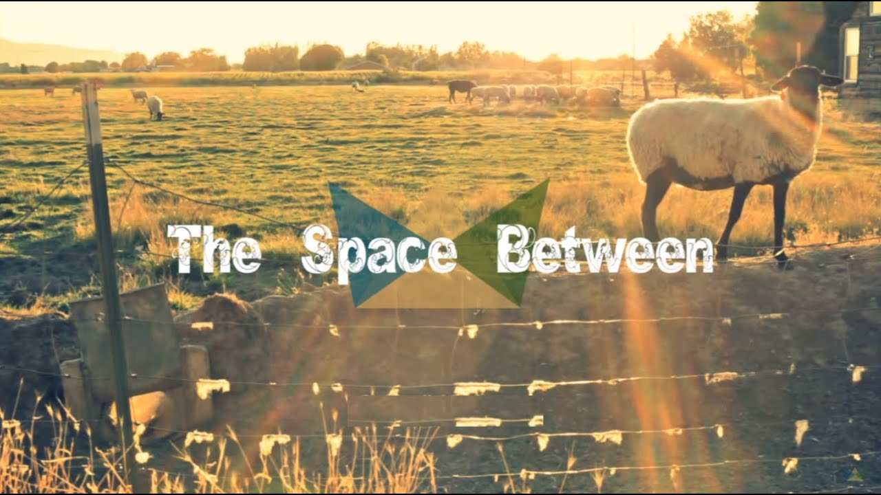 The Space Between // Sounds Like Reign (Lyric Video)