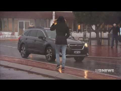 Wild Weather | 9 News Perth