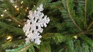 Huawei Mate 9 sample video (4K) - Christmas Tree