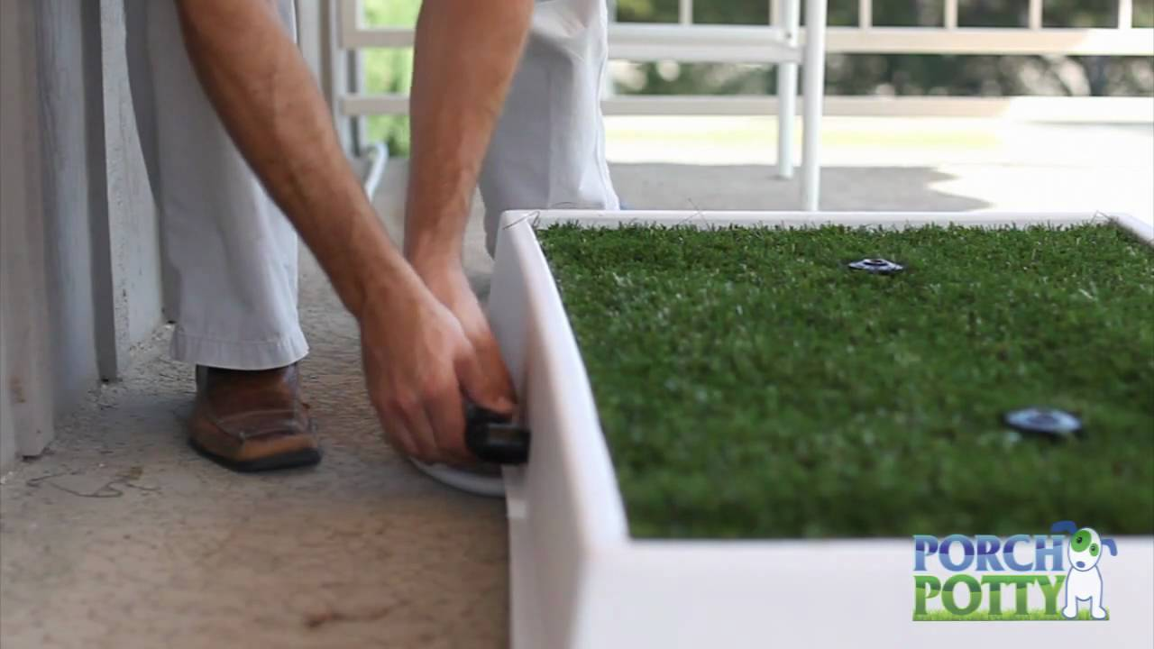 Charming Porch Potty Is The Dog Potty That Cleans Itself   YouTube