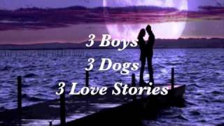 My Boyfriends' Dogs - YA Children's Book Trailer - Dandi Daley Mackall