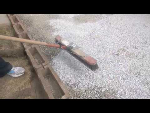 sweeping-the-oyster-shells-onto-the-bocce-court
