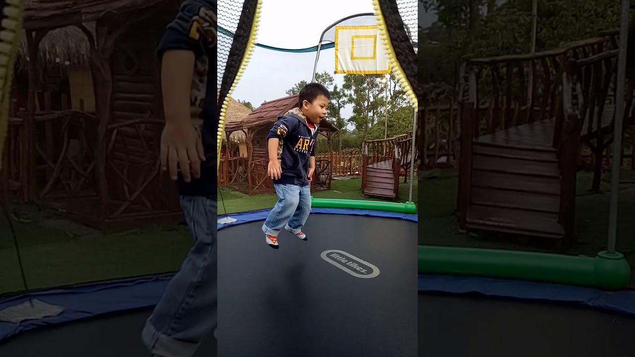 Playful Henry - jump jump jump