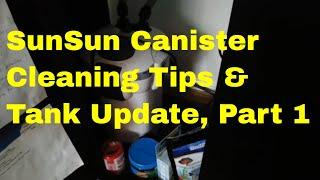 Sunsun 302 Cleaning & Cichlid Tank Update, Part 1