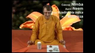 Аюрведа: Ним и кожа (Роберт Грислис) 9 урок