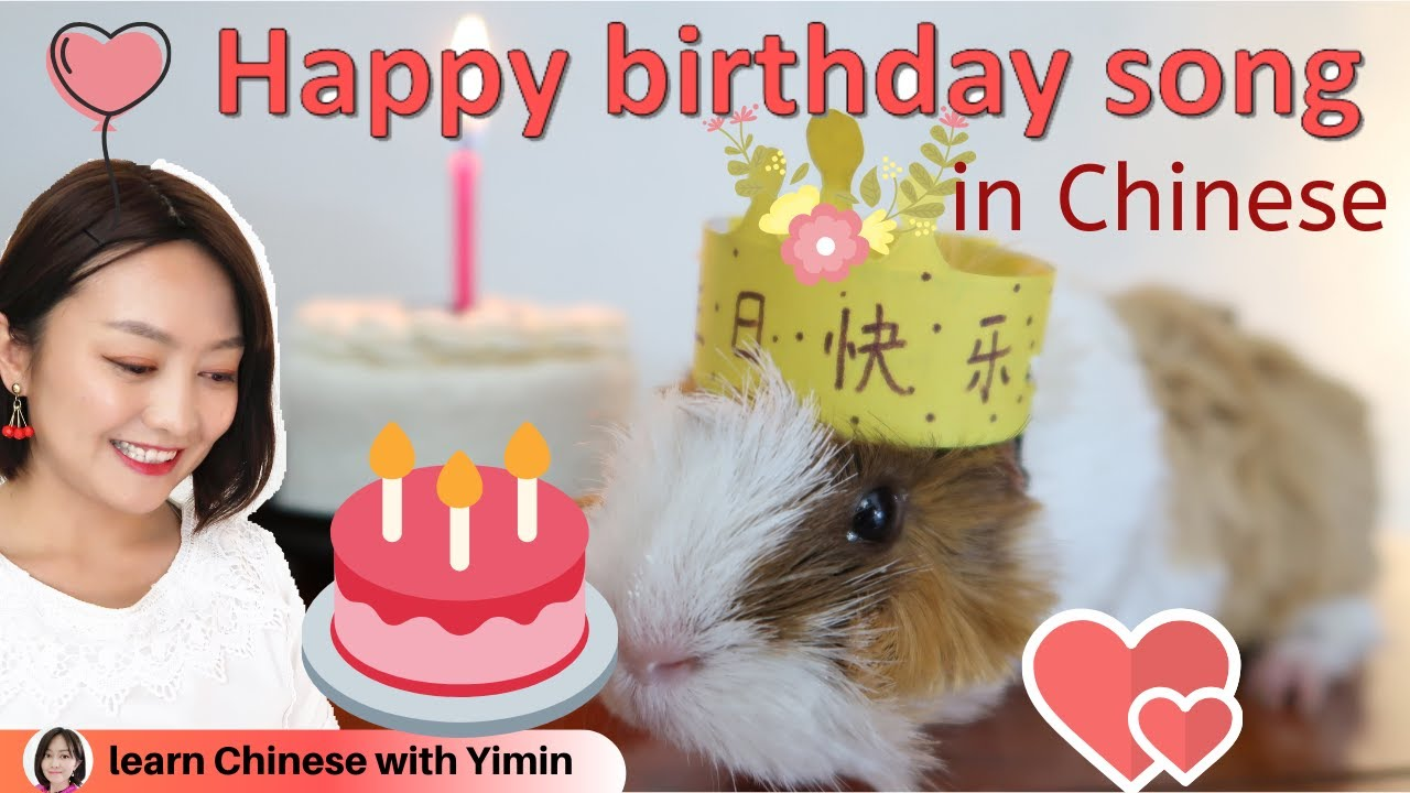 Happy Birthday Song In Mandarin Chinese With A Guinea Pig Learn Mandarin Chinese With Yimin Youtube