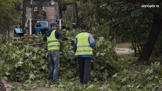В Королёве началась комплексная генеральная уборка в многоквартирных домах и во дворах