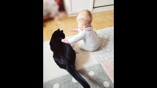 Cute Baby and Cat Videos Will Make You Smile All Day