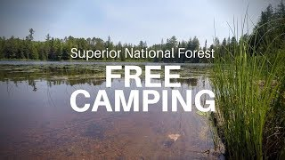 Free Car Camping iฑ the Superior National Forest at Baker Lake