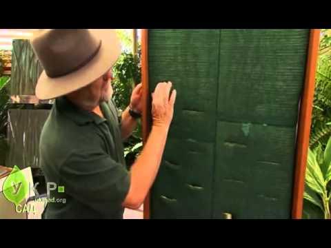 видео: Вертикальный цветник своими руками
