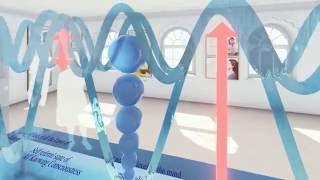 """3D Bubble Diagram Exhibition """"Comes To Life"""""""