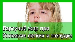 видео Барсучий жир от кашля детям: лечение и способы применения (растирание и др)