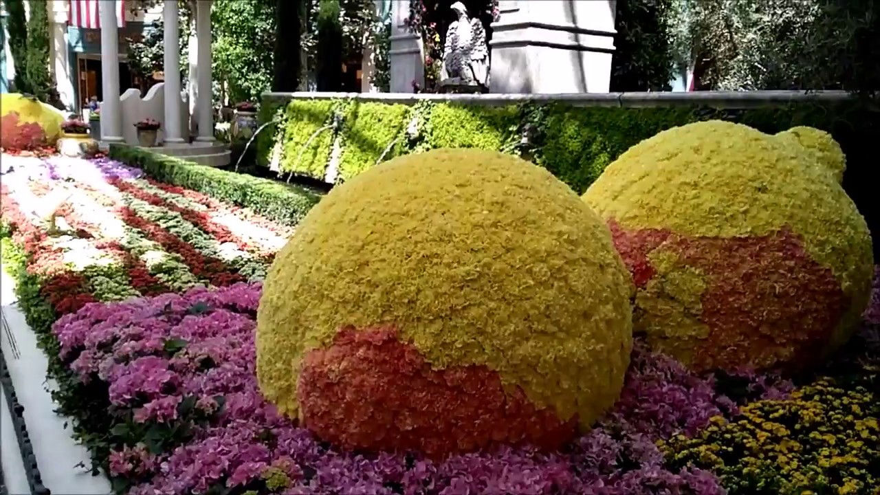 Bellagio Conservatory U0026 Botanical Garden Summer 2017 I Las Vegas Part 4