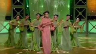 Vietnamese version of Chinese song (戀曲1990)