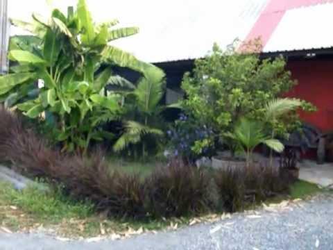 บ้านสวนพอเพียง part 1